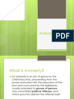 Intro to Amnesty