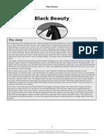 EX5_Black_Beauty_teacher_notes.pdf