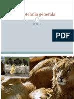 Zootehnia Gen.specia Curs 2