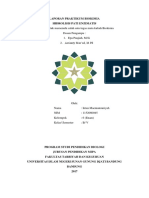 laporan praktikum hidrolisis