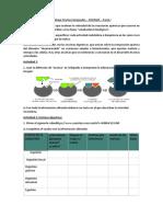Trabajo Práctico Integrador Enzimas Parte I