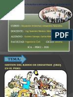 gestion del riesgo del desastres.pptx