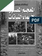 المعجم المصور لأسماء النباتات بديفيان