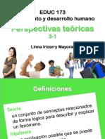 Perspectivas_teoricas.pdf