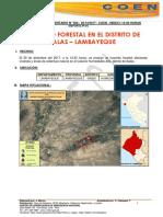 LAMBAYEQUE - Lambayeque - Salas - Humedades Alto- Incendio Forestal