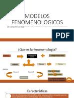 modelos fenomenologicos