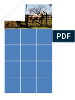 Horses Activity Cards Grid