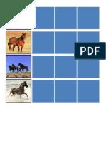 Horses Schedule Strips