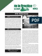 CIP 38p.pdf