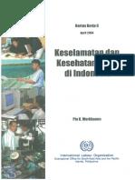 wcms_120561.pdf