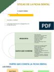 Características de La Ficha Dental