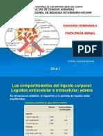 Renal_Duriel.pdf