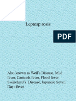 Case Study Leptospirosis Powerpoint