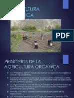 Agricultura Organica 1