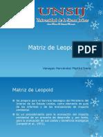 MATRIZ DE LEOPOL.pptx