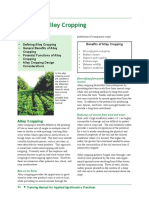 companionplant108-121207132653-phpapp02.pdf