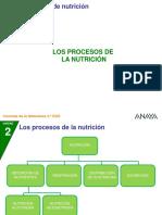 2CN 22 4P Procesosnutri