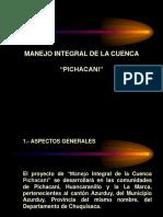 """MANEJO INTEGRAL DE LA CUENCA   """"PICHACANI"""""""