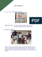 Program de Interventie Pentru Copilul Agresiv