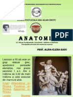 Anatomie9
