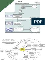 Mapas Mentais Quimica e Biologia