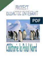 calatorie-la-polul-nord-proiect-didactic-integrat.doc