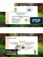Control Biologico de Plagas y Enfermedades de Los Cultivos (1)