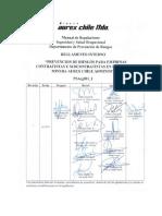 PSArg001 Rev01 Reglamento Interno de Prevención de Riesgos Para Empresas...