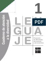 Len1_Cua_Atencion a la diversidad.pdf