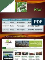 Kiwi 2017