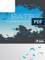 Bats Conservationguide