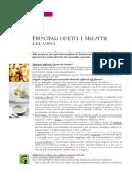 Difetti e Malattie Vino 1_08