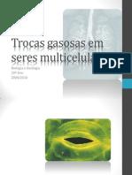 (9) Biologia e Geologia - 10º Ano - Trocas gasosas em seres multicelulares