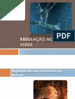 (10) Biologia e Geologia - 10º Ano - Regulação nos seres vivos