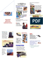 Leaflet 3m Plus Pencegahan Dbd