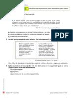 Consolidación Tema 5 Texto Descriptivo