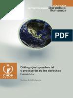 Diálogo jurisprudencial y protección de los derechos humanos - Rodrigo Brito Melgarejo