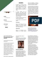 191704584-TRIPTICO-ADVIENTO.docx