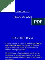 Cap. Xi Flujo de Caja