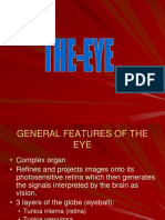 The-Eye-ss.ppt