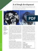 BBi-YB2010-Dough-Development Rapidojet.pdf
