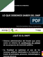 QUE-ES-EL-SNIP.pdf