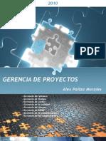 Gerencia de Proyectos Cap i - Alex Paliza Morales