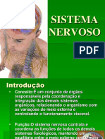Seminário Sistema Nervoso Novo.