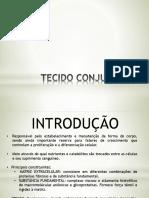2 - Tecido Conjuntivo