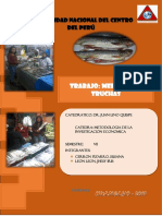 JHESI Y SUSU TRUCHAS.docx