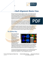 Alignment Master Class 2 day.pdf