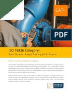 Vibration Analysis ISO Cat I DL.pdf
