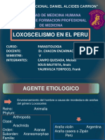 LOXOSCELISMO