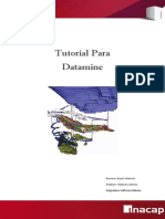 Manual Datamine (1)
